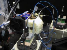 qunem-experimental-setup