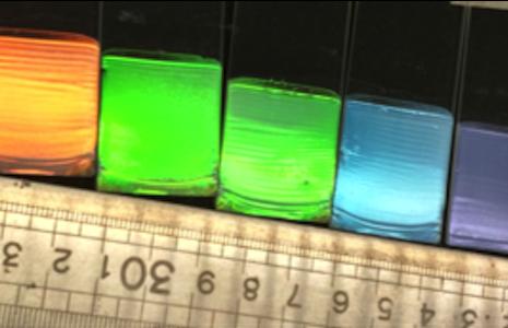 rawints-experimental-technics-mrc-research